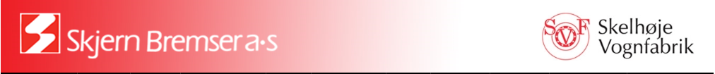 logo skjernskelhøje